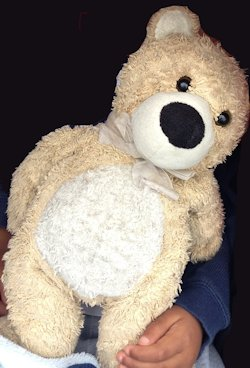2000 Tan Cream Bear Large Black Nose
