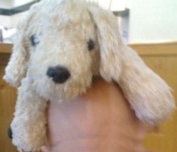 2005 Cream Chenille Plush Factory Floppy Dog