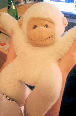 , Searching – 80's – 90's  Tan & White Monkey