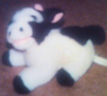 90's Lying Down Black & White Cow that Moo's when Squeezed