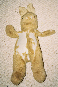 , Searching – 90's GUND 12 inch BROWN RABBIT