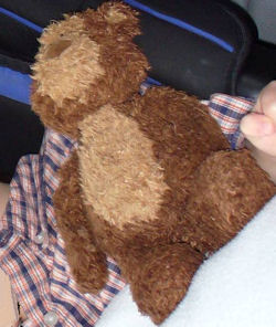 Animal Alley? Dark & Light Brown Chenille Bear