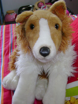 , Searching – 90's Animal Alley LARGE Seated BROWN & WHITE COLLIE with BROWN LEATHER NOSE