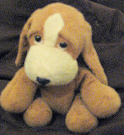 Small Beanie Brown & Cream Basset Hound? Dog