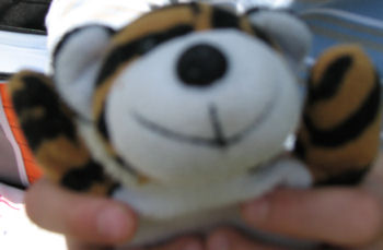 Small Beanie Baby Style Black & Burnt Orange Striped Tiger Cat with White Face & Tummy