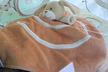 Blankets and Beyond Tan & Beige Dog on Orange Blankie with Beige Spiral