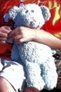 , FOUND – Blue Teddy Bear with  Grey Embroidered Eyes