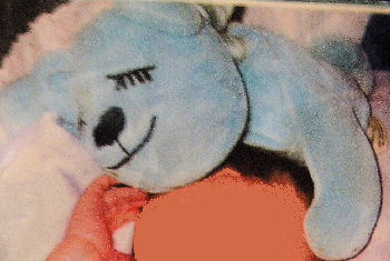 , Searching – 2005 FLOPPY BLUE SLEEPING BEAR with BIG EYE LASHES