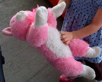 , FOUND – Animal Alley?? 14 inch BRIGHT PINK & WHITE CAT