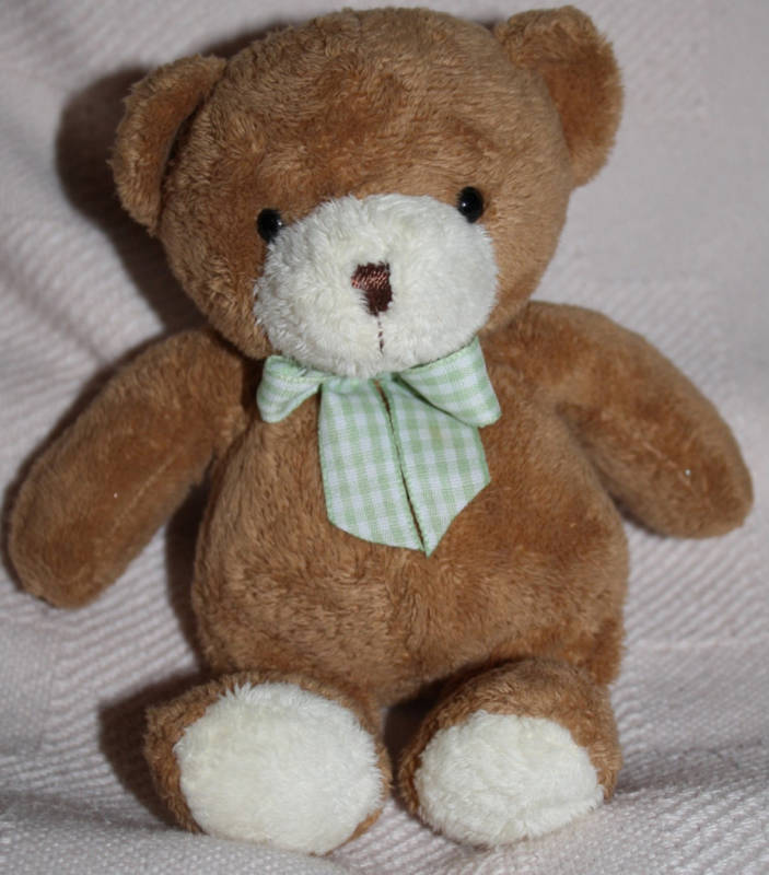 , Searching – Carter's BROWN & WHITE BEAR with LARGE GREEN BOW
