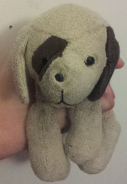 Beige Beanie Dog with Brown Eye Patch, Tail, and Ear