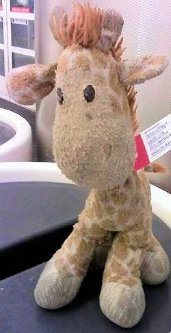 DanDee Giraffe