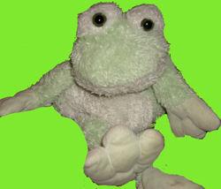 DanDee Frog