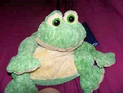 DanDee Loveable Huggable Frog