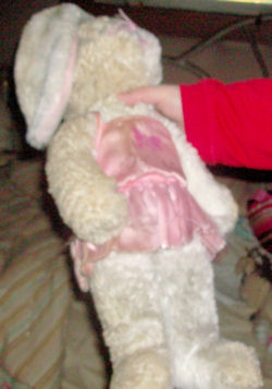DanDee White Princess Rabbit Wearing a Pink Tutu