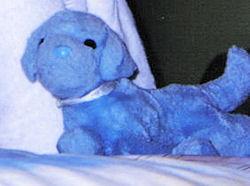 , FOUND – DOUGLAS Baby's First BLUE DOG #1770