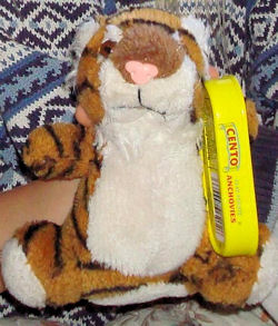 , FOUND – FAT TIGER CUB with SHORT ARMS & LEGS