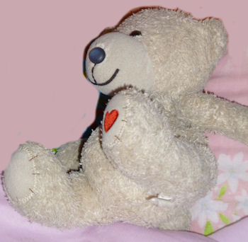 , Searching – Cuddly Gray Bear with a Red Heart  on Foot