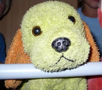 floppy light green terry dog, Searching – 2005 FLOPPY Light GREEN TERRY DOG with ORANGE EARS