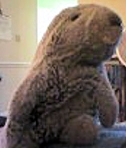 , Searching – 80's GUND GROUNDHOG