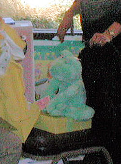 2002 Hallmark? Green Frog Wearing a Bow Tie