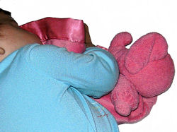 """, Searching – RUSS? HOT PINK ELEPHANT 12"""" Square BLANKIE"""