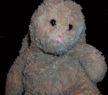 , Searching – 2004 Just Friends TAN CHENILLE RABBIT with PLAID BOW