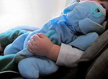 , FOUND – Koala Baby BLUE DOG with TEAL EARS, TAIL, EYE PATCH