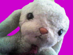 6 inch Hallmark Long Eared White Bunny Wearing a Burgundy Bolo Tie