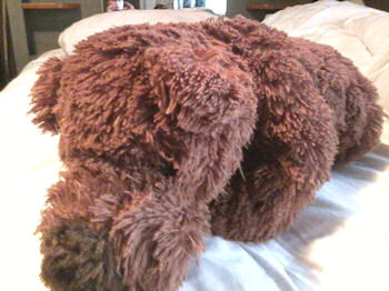 XL Walmart Shaggy Brown Lying Down Bear Dog
