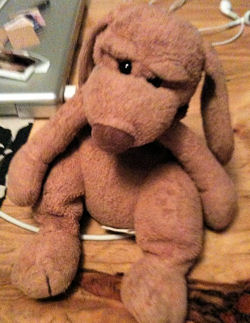 , FOUND – 2001 Manhattan LARGE RAGTAIL DOG Named CLARENCE Top Priority