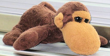, FOUND – GUND?( MICHELLE on Tag) BROWN MONKEY
