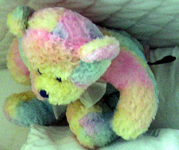 Multi-Color Pastel Bear
