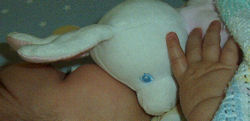 , FOUND – White MY FIRST BUNNY Wearing PINK & BUNNY SLIPPERS