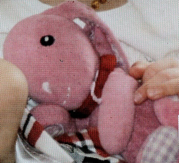 2010 Old Navy Hot Pink Rabbit with Lavender & White Gingham Ears & Paws
