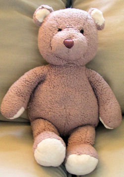 , FOUND – Pottery Barn Kids PBK BROWN BEAR with CREAM VELOUR Ears & Paws