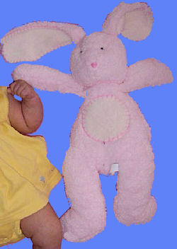 Pottery Barn Kids Large Pink Rabbit