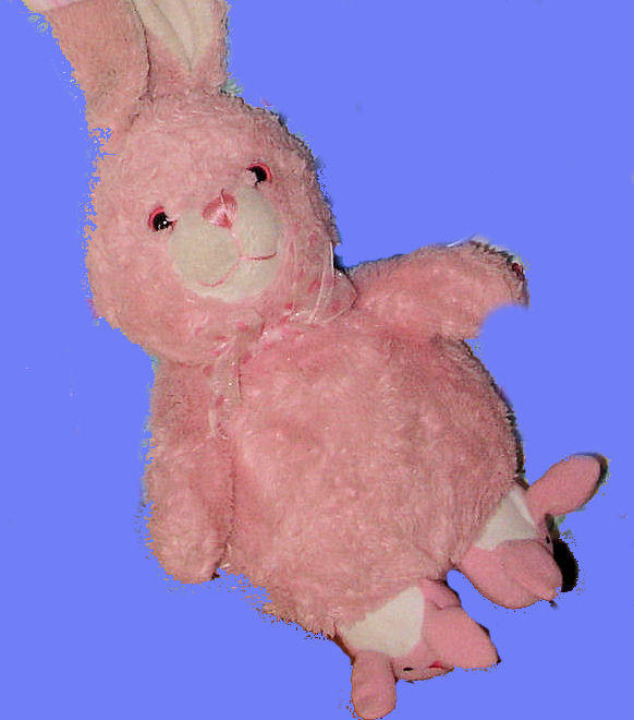 Pink Bunny Rabbit with Bunny Rabbit Slippers