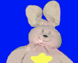 , Searching – PINK BUNNY with STAR on his TUMMY – Plays Twinkle, Twinkle Little Star