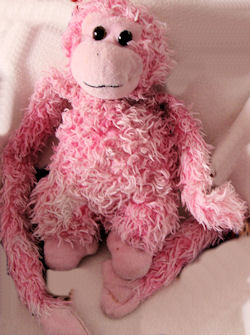 , Searching &#8211; CURLY Shaggy Chenille Pink Monkey with Long Arms <i>Top Priority</i>