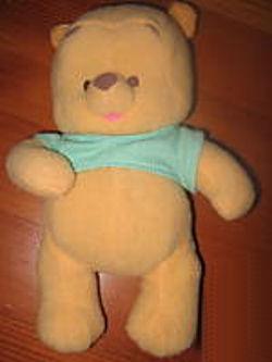 Winnie the Pooh wearing an Aqua Shirt