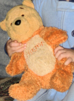 , Searching – 2006? WINNIE the POOH Dressed in TIGGER COSTUME with HOOD