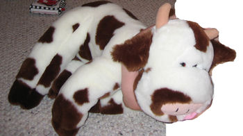, Searching – 2002? Penny's Golden Bear Co. LARGE WHITE COW with BROWN SPOTS, EARS, HOOVES