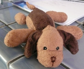 Small Lying Down Light Brown Floppy Dog with Brown Ears & Back Patch