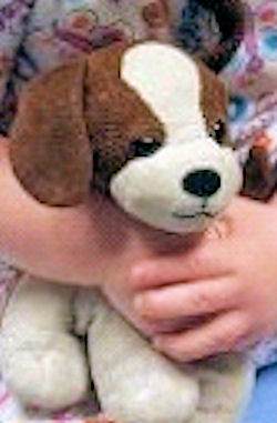 Small Brown & White Dog with Ear Decoration
