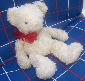 , Searching – SMALL WHITE BEAR with RED ORGANDY BOW
