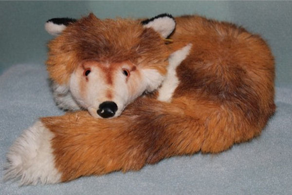 Realistic Curled Up Red Fox with One Eye Closed