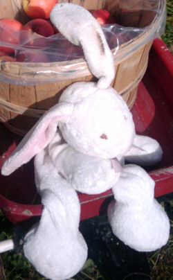 , Searching – 2006? 2007? Macy's LONG WHITE RABBIT with PINK EARS & FEET
