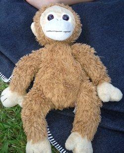 TY Tan Furry Monkey, Searching – 2010? TY Tan Furry Monkey Cream Face, Hands Feet