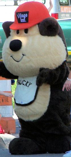 bucky bear, Searching – Brown and White Bucky Bear wearing Village Inn Red Cap